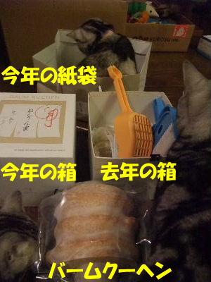 2010年2月ねんりんやリ7.JPG