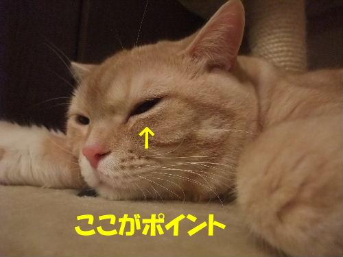 2010年2月行き5.JPG