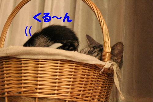 2011年10月はみ2.JPG
