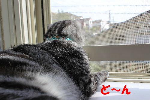 2011年10月よい2.JPG