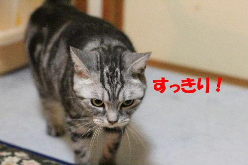 2011年10月わが4-3.JPG