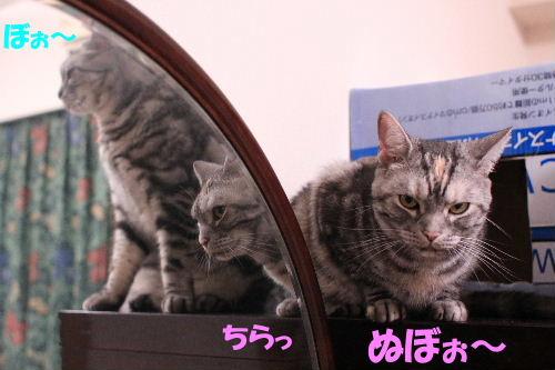 2011年10月鏡5.JPG