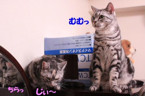 2011年10月鏡7.JPG