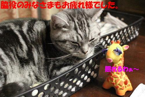 2011年12月くつ4.JPG