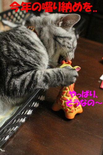 2011年12月くつ4-4.JPG