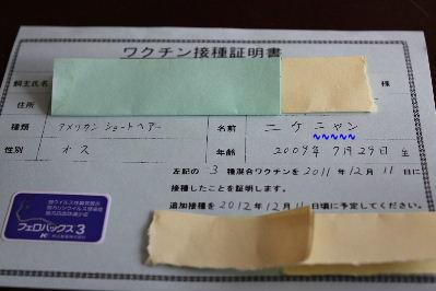 2011年12月不思議1.JPG