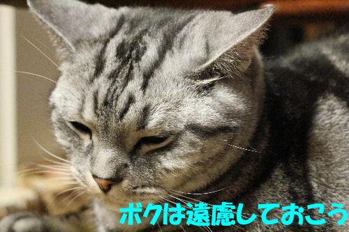 2011年12月抱っこ5.JPG
