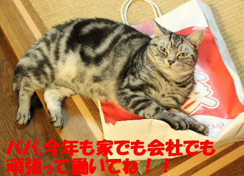 2011年1月福袋6-2.JPG