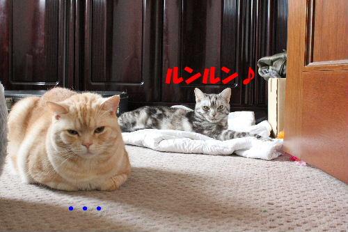 2011年5月うば2.JPG