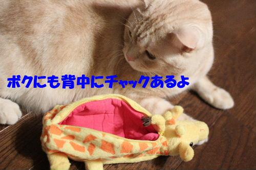 2011年5月誕生日5-3.JPG