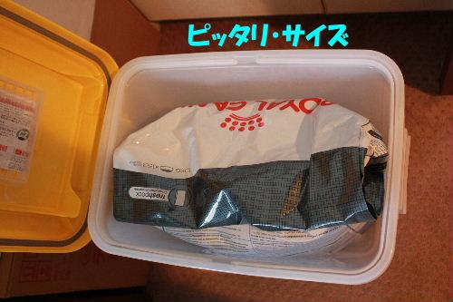 2011年6月フード1-8.JPG