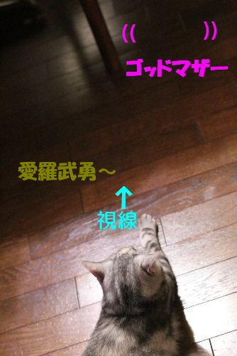 2011年6月男女9.JPG
