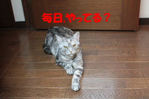 2011年7月のび6.JPG