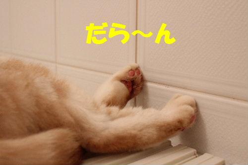 2011年7月風呂8.JPG
