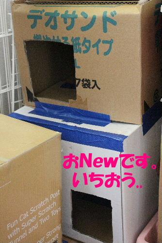 2011年8月段2.JPG
