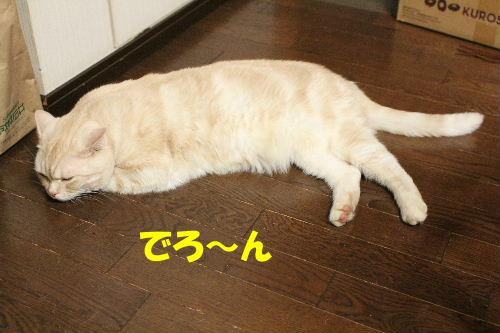 2011年8月2才3.JPG