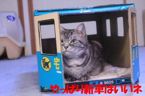 2012年1月遊2.JPG