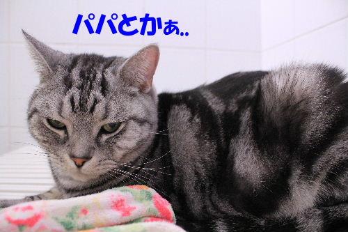 2012年2月うる4.JPG