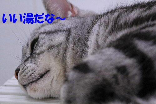 2012年2月うる4-6.JPG