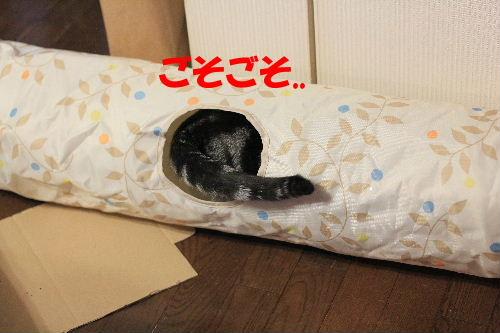 2012年3月ちい4-4.JPG