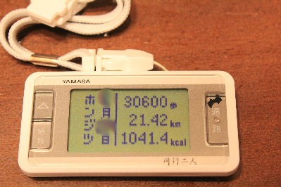2012年3月盛り1.JPG