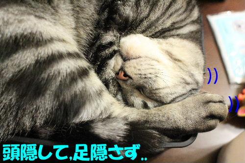 2012年3月盛り3-2.JPG