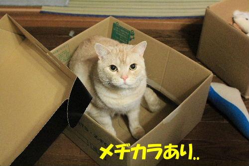 2012年3月箱2-2.JPG