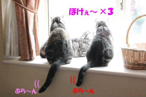 2012年4月初日2-4.JPG
