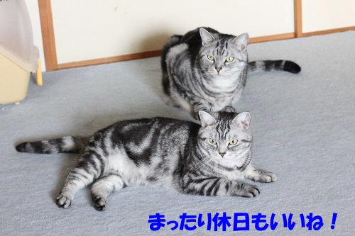 2012年4月初日3-4.JPG