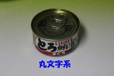IMG_7592.JPG